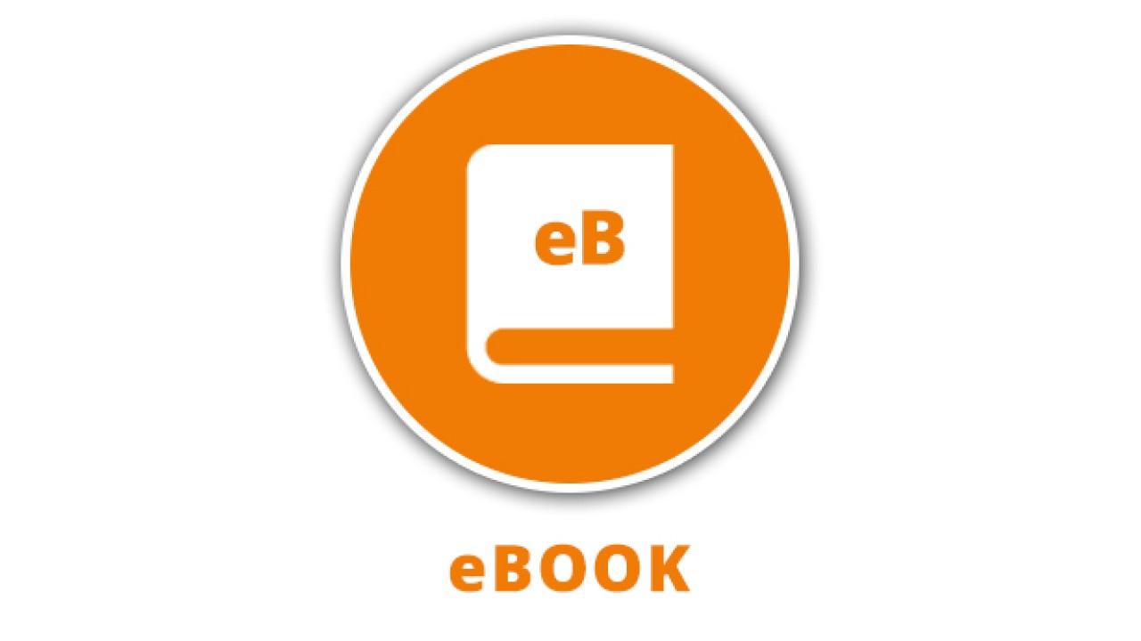 epub Umweltbetriebsprüfung und Öko Auditing: Anwendungen und